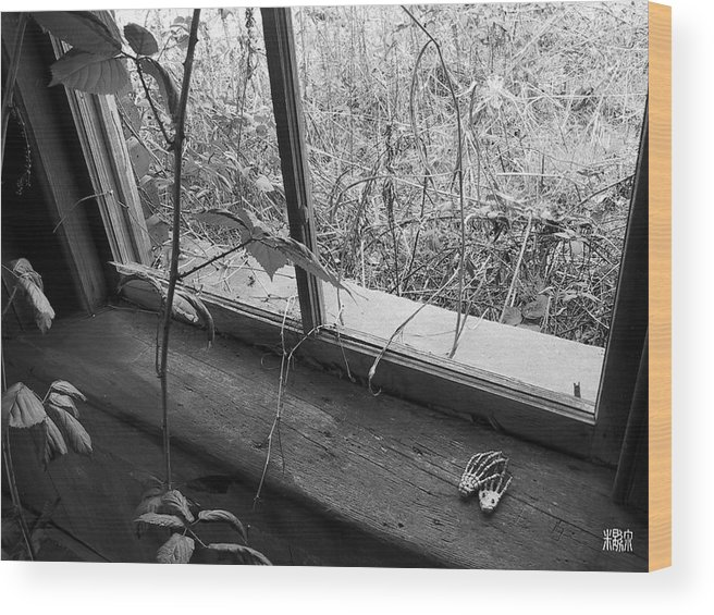 B/w Wood Print featuring the photograph Window Of The Past by Michele Caporaso