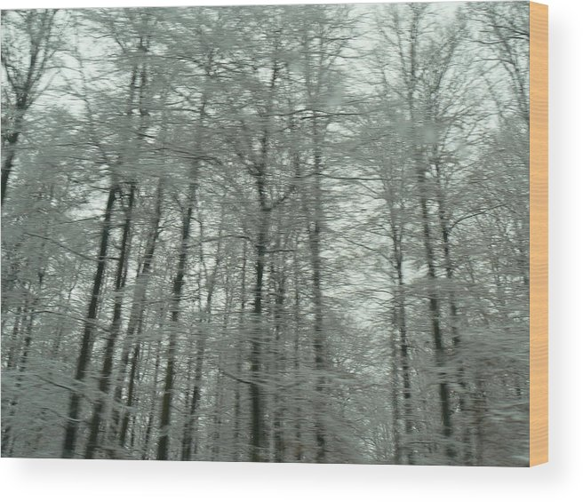 Landscape Wood Print featuring the photograph Winter In Germany by Tammy Forristall