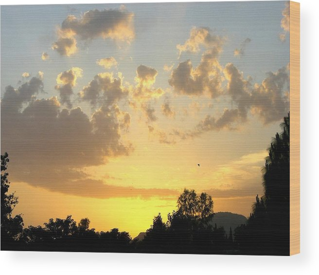 Sunset Wood Print featuring the photograph Winter In Pakistan by Caroline Urbania Naeem