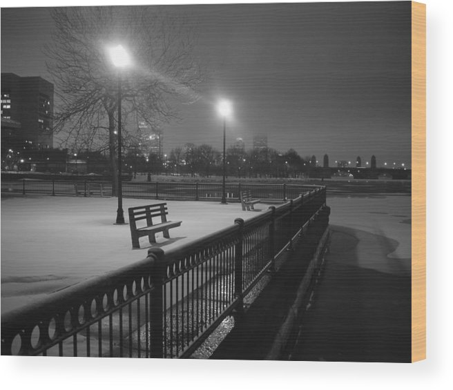 Winter Wood Print featuring the photograph Winter In The Park by Eric Workman