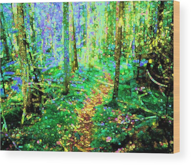Nature Wood Print featuring the digital art Wooded Trail by Dave Martsolf