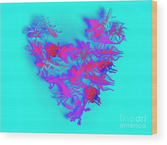 Heart Wood Print featuring the photograph Heart Of The Wild by Jorgo Photography - Wall Art Gallery