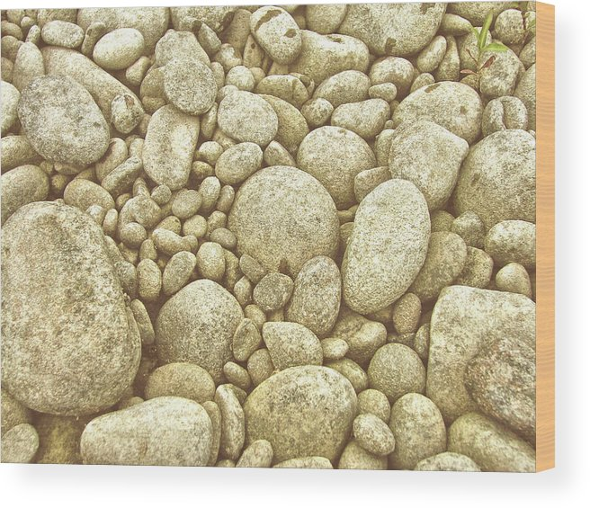 River Wood Print featuring the photograph River Carpet by JAMART Photography
