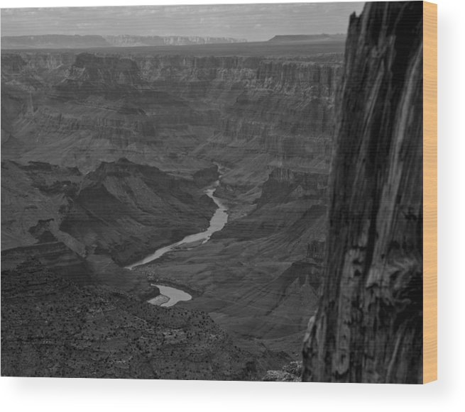 Grand Canyon Wood Print featuring the digital art Grand Canyon And Colorado River by Gary Rieks