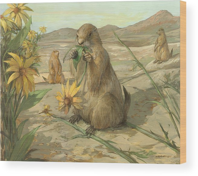 Wildlife Wood Print featuring the painting Black-tailed Prairie Dogs by ACE Coinage painting by Michael Rothman