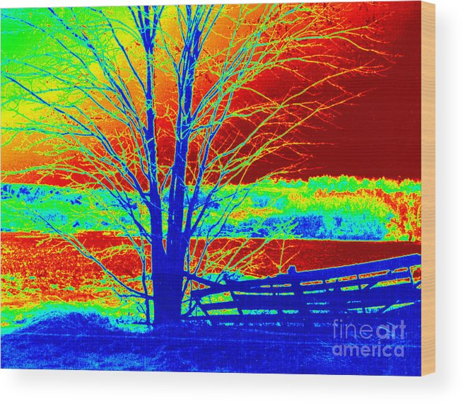 Abstract Wood Print featuring the painting Blue Tree On Red And Green Background by Debbie Wassmann
