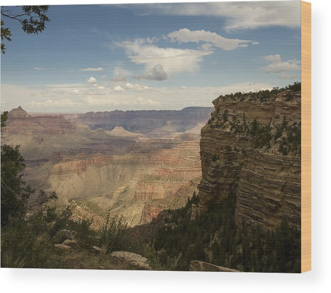 Grand Canyon Wood Print featuring the digital art Grand Canyon by Gary Rieks