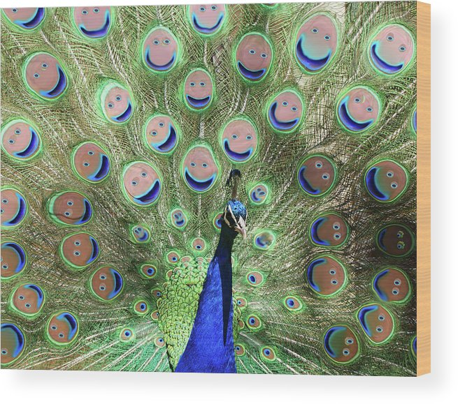 Bird Wood Print featuring the photograph Peacock Smiles by Ernie Echols