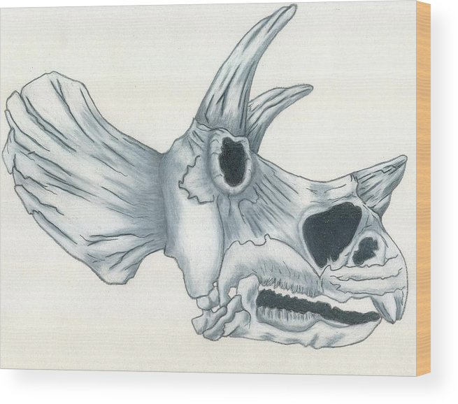 Dinosaur Wood Print featuring the drawing Tricerotops Skull by Micah Guenther