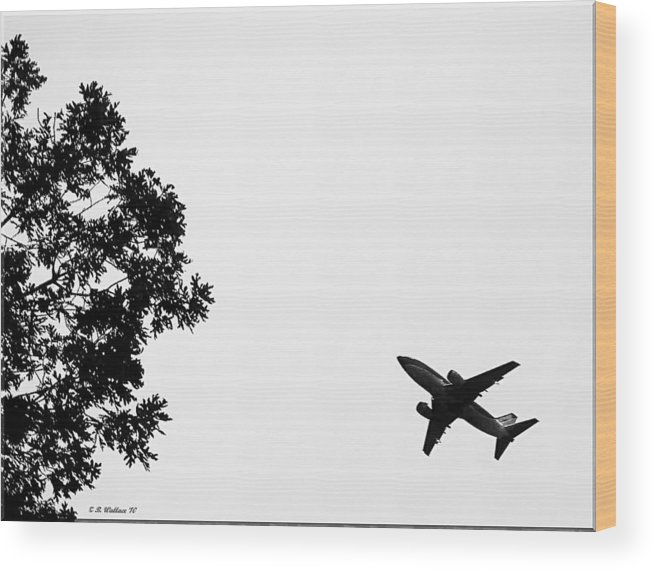 2d Wood Print featuring the photograph Leafing On A Jet Plane by Brian Wallace