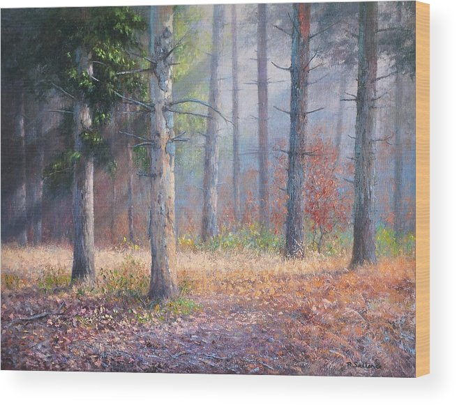 Forest Pinetrees Sunrays Woods Wood Print featuring the painting Pinewoods by Richard Sellence