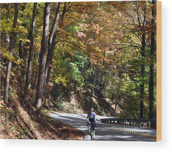 Bicycle Wood Print featuring the photograph The Uphill Climb by Lydia Holly