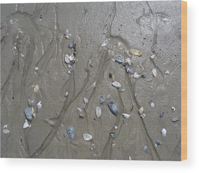 Beach Wood Print featuring the photograph Traces IIi by Mary Sullivan