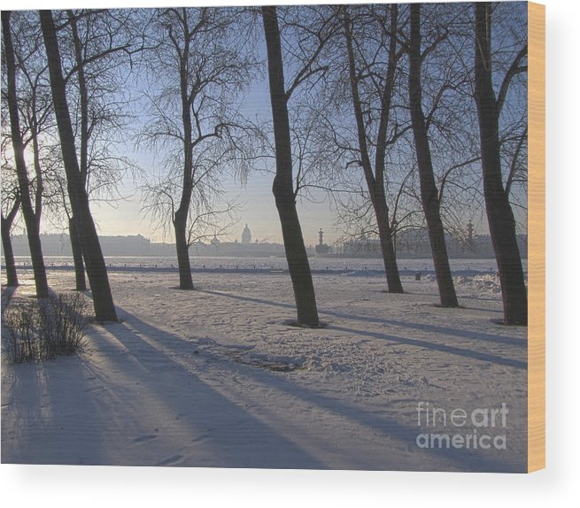 City Wood Print featuring the photograph winter forest Peterburg by Yury Bashkin