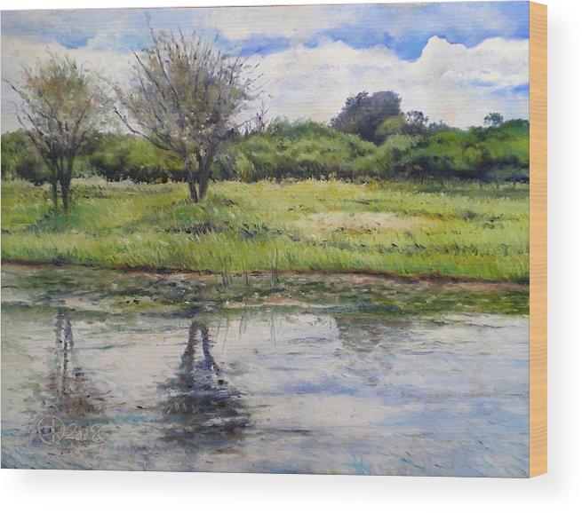 Maun Botswana Wood Print featuring the painting Thamalakane River At Maun Botswana 2008 by Enver Larney