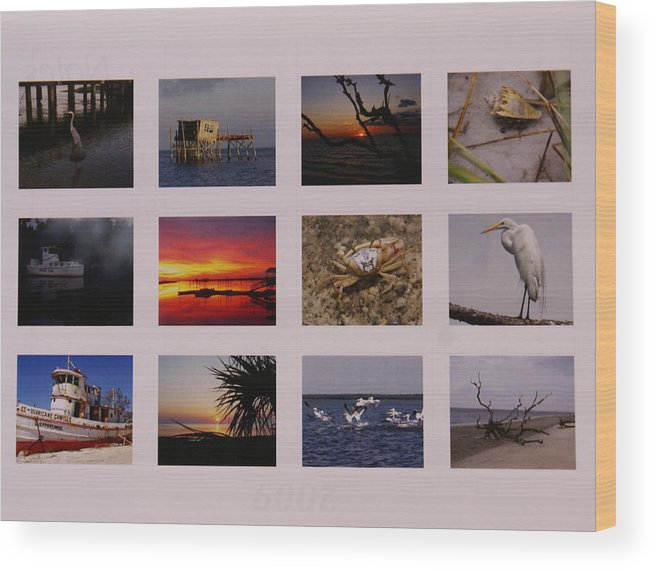 Florida Wood Print featuring the photograph 2008 Calendar Back Of Gulf Views Edition by Debbie May