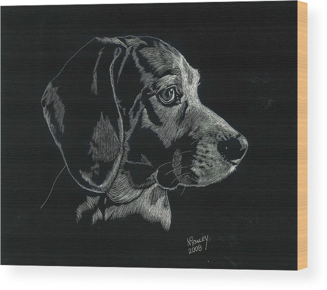 Scratchboard Wood Print featuring the drawing Archie by Norma Rowley