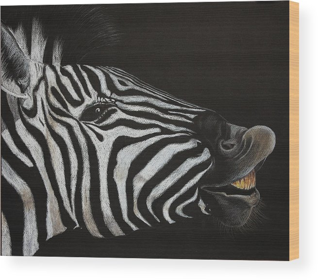Zebra Wood Print featuring the painting Are My Teeth Clean Yet by Don MacCarthy