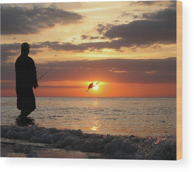 Sarasota Wood Print featuring the photograph Caught At Sunset by Dick Goodman