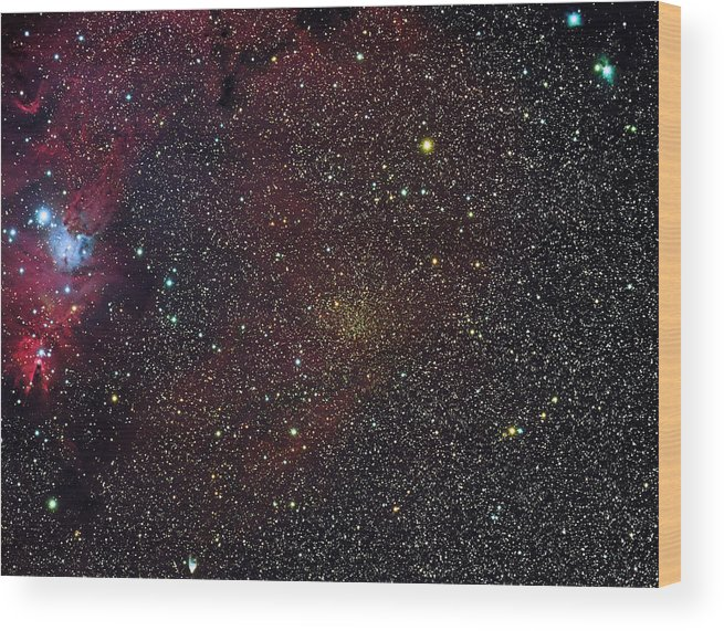 Space Wood Print featuring the photograph Christmas Tree Cluster And Fox Fur Nebula by Jim DeLillo