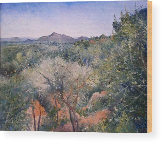 Botswana Landscapes Wood Print featuring the painting Gaberone Botswana 2008 by Enver Larney