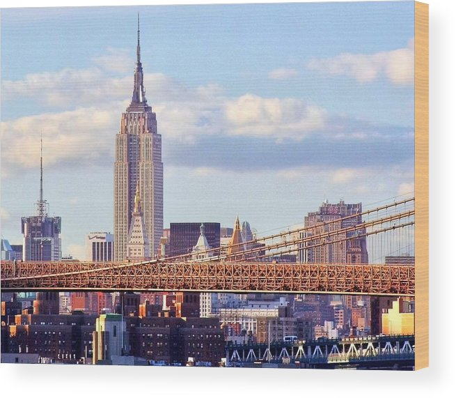 Empire State Building Wood Print featuring the photograph Inhabited Sculpture by Mitch Cat