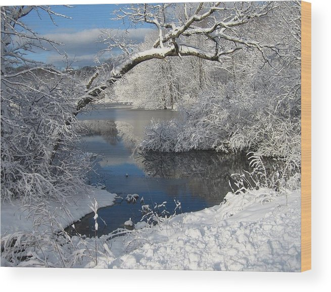 Art Nomad Wood Print featuring the photograph Michigan Winter by Art Nomad Sandra Hansen