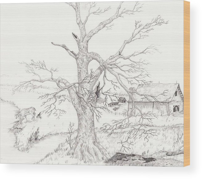 Realistic Drawing Wood Print featuring the drawing Midwest Usa by Dan Theisen