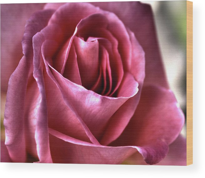 Rose Wood Print featuring the digital art Passionate by Margaret Hormann Bfa