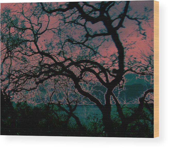 Abstract Wood Print featuring the painting Sundown by Tim Tanis