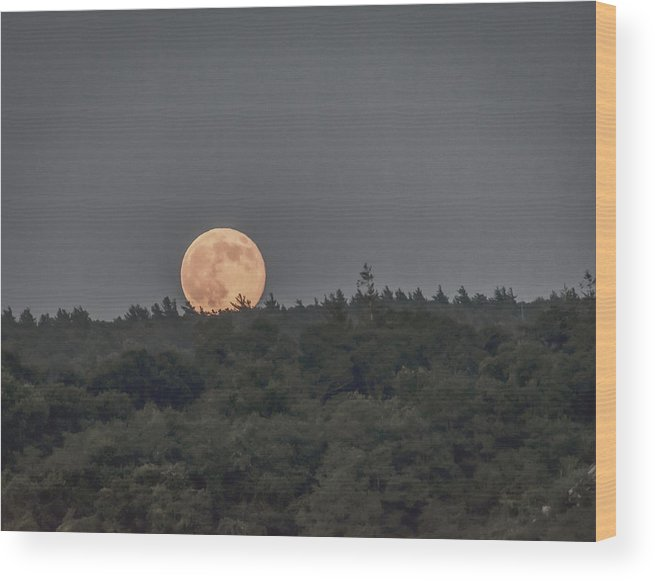 Black Brook Shop Wood Print featuring the photograph Supermoon Rising by Black Brook Photography