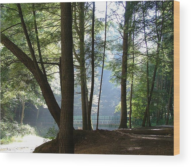 Bridge Wood Print featuring the photograph The Bridge Of Peace Forever by Mindy Newman