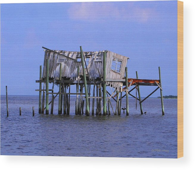 Cedar Key Wood Print featuring the photograph The Honey Moon Suite 4 - Debbie May - Phtosbydm by Debbie May
