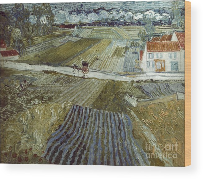 1888 Wood Print featuring the photograph Van Gogh: Landscape, C1888 by Granger