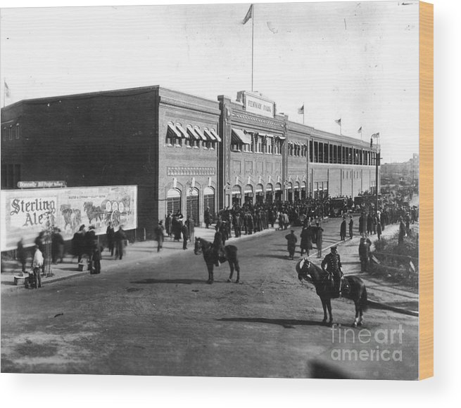 Horse Wood Print featuring the photograph National Baseball Hall Of Fame Library by National Baseball Hall Of Fame Library