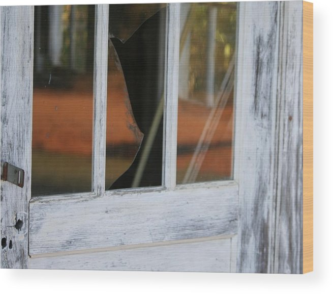 Old Wood Print featuring the photograph Broken Door by Lisa Johnston