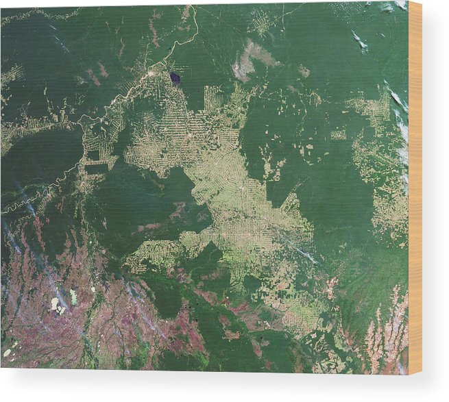 Forest Wood Print featuring the photograph Deforestation In The Amazon by Nasa Earth Observatory