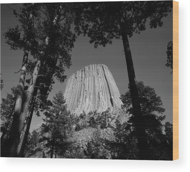 Adnt Wood Print featuring the photograph Usa, Wyoming, Hulett, Devil's Tower by Walter Bibikow