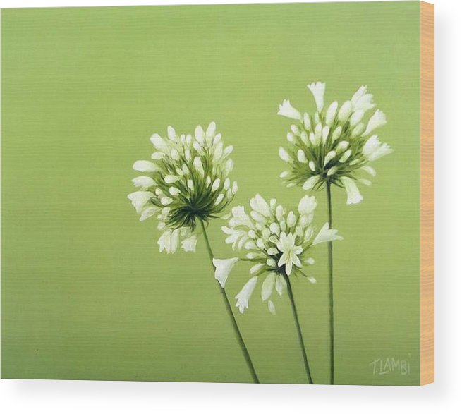 Flower Wood Print featuring the painting Agapanthus by Trisha Lambi
