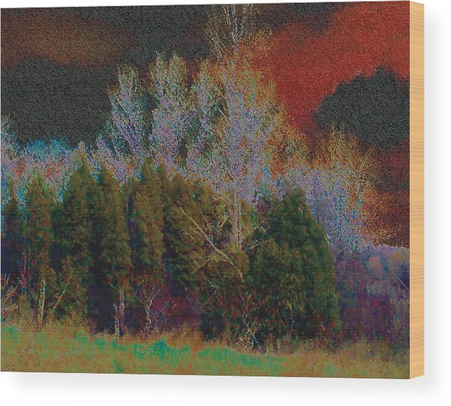 merritt Island Park Wood Print featuring the photograph Enchanted Forest 10 by The Art of Marsha Charlebois