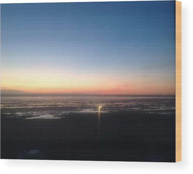 Delight Wood Print featuring the painting Evening Delight by Judith Desrosiers