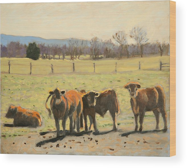 Cow Paintings Wood Print featuring the painting Here's Looking At You by David Zimmerman