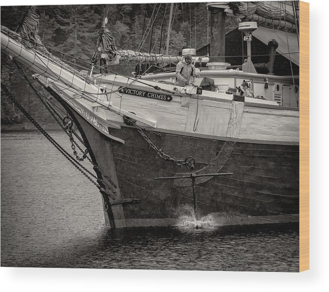 Victory Chimes Wood Print featuring the photograph Let Go by Fred LeBlanc