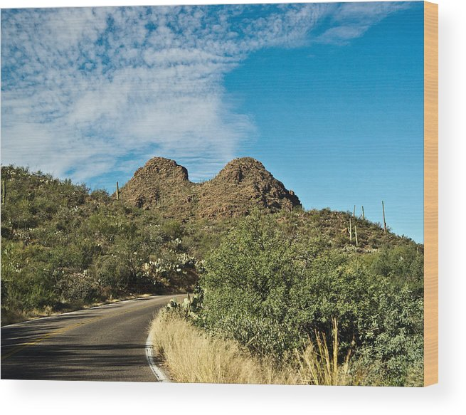 Road Wood Print featuring the photograph Road To The Two Humped Camel by Douglas Barnett