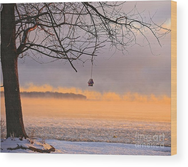Winter Wood Print featuring the photograph Snowbird's Summer Home by Steve Ratliff