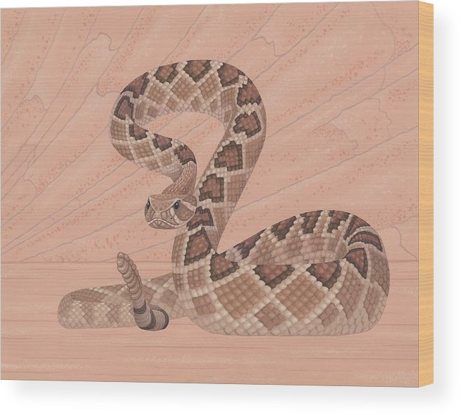 Painting Wood Print featuring the painting Western Diamondback Rattlesnake by Nathan Marcy