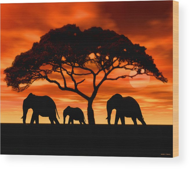 Elephant Wood Print featuring the digital art Elephant Sun Set by Walter Colvin