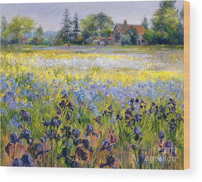 Landscape; Iris; Flower; Flowers; Irises; Tree; Trees; Field; House Wood Print featuring the painting Irises And Two Fir Trees by Timothy Easton