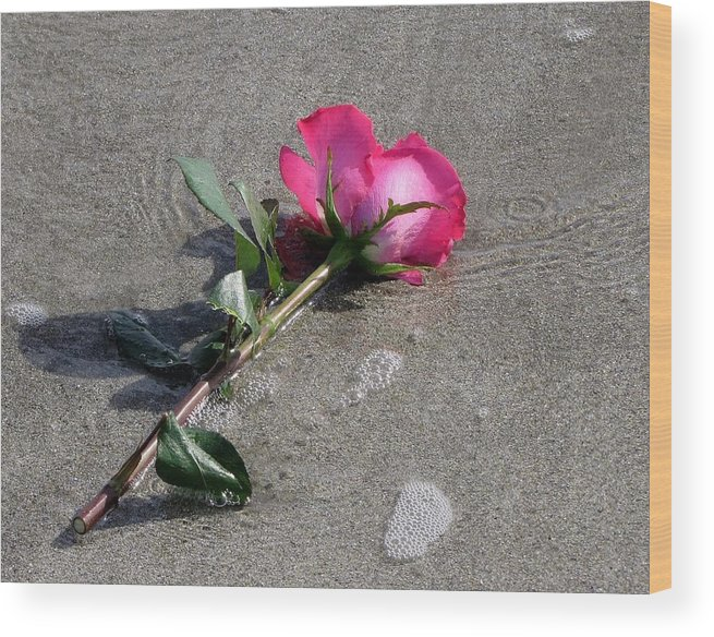 Rose Wood Print featuring the photograph A Rose For Julie by Lori Pessin Lafargue