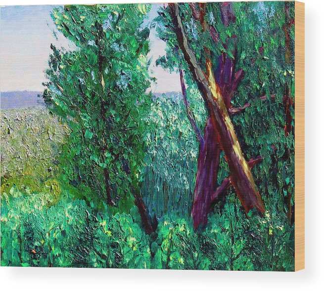 Plein Air Wood Print featuring the painting Bcsp 6 22 by Stan Hamilton